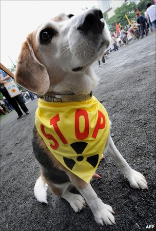 Dog in anti-nuclear banner