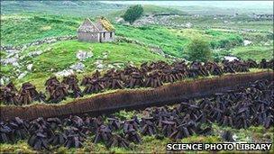 Peat bog in Ireland