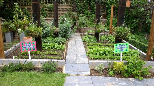 Vegetable patches in the Blue Peter garden