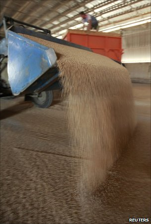 Grain in warehouse