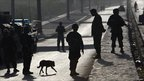Dog walks among Afghan soldiers near the hotel