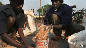 Men scoop up grain at a food distribution point for internally displaced southern Sudanese by the World Food Programme in January 2011 in the town of Yambio