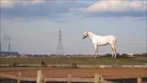 The proposed white horse sculpture designed by artist Mark Wallinger