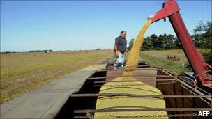A hopper wagon unloads soybean into a truck in a field in the locality of Perez Millan, 200km from Buenos Aires, in April, 2008.