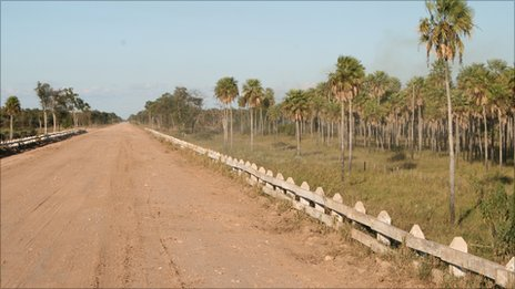 Road running through Paraguay's Chaco region