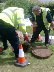Contractors putting rat bait down sewers