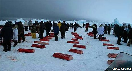 Chunks of whalemeat laid out on the ice