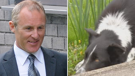 Philip Pook arriving in court and his collie dog outside an earlier hearing