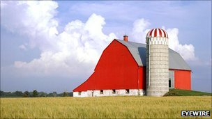 Red barn (Eyewire)