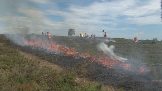 Heathland burning for research in Dorset