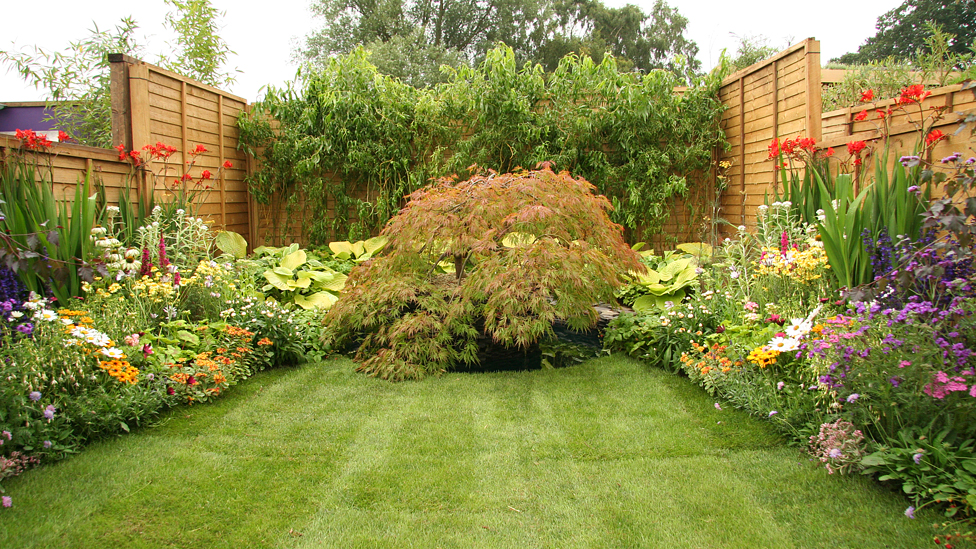 Bbc news in pictures sandringham flower show 2011 for Bbc garden designs