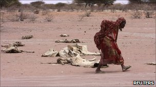 A woman walks past carcasses in Kenya on 8 August