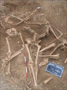 Oxford Viking massacre revealed by skeleton find