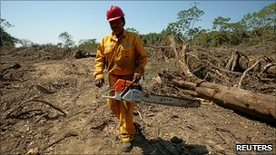 A worker with a chainsaw on the route of the controversial road in Bolivia.