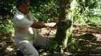 Technician fitting camera trap (c) TEAM Network