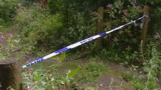 Darren Williams' body was found at Brynglas woods