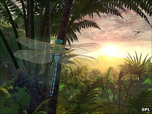 Artist's impression: Carboniferous forest