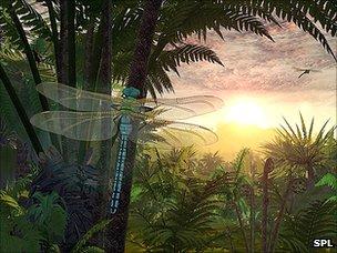 Artist's impression: Carboniferous forest