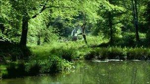 Heligan's Lost Valley