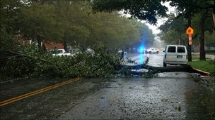 A fallen tree blocks the road. Photo: Hadyn Lassiter
