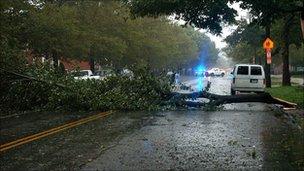 A fallen tree blocks the road. Photo: Hadyn Lassiter