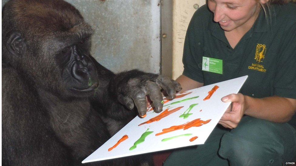 N'dowe Gorilla CBBC Newsround - Paint...