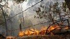 A fallen tree burns near a fence line in Texas. Photo: 5 September 2011