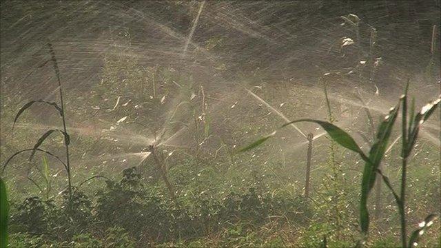 Crop sprinklers