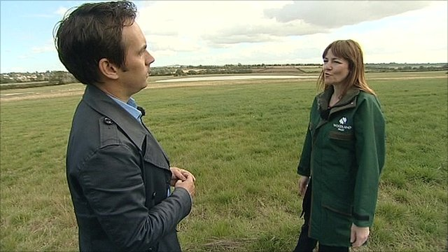 The BBC's Tim Muffett speaks with Georgina McLeod from The Woodland Trust