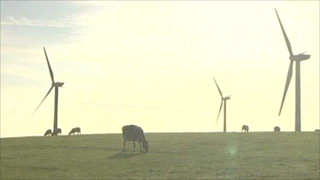 Wind farm scene
