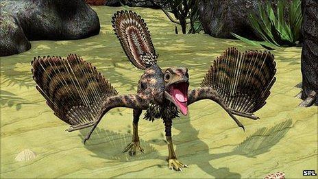 Archaeopteryx artist's impression