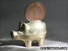 A lucky German pig