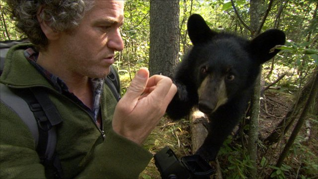 Gordon Buchanan and Hope when she was a cub