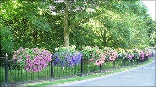 Flower baskets in Glenrothes