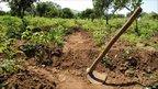 A spade in a farm