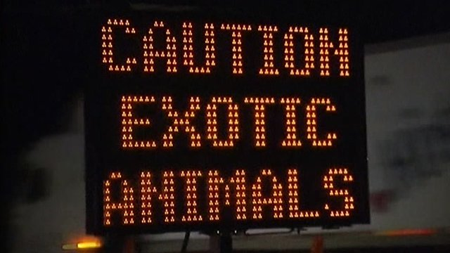 Roadsign warning of exotic animals on loose