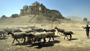 Shepherd walks with livestock past the Darul Aman palace in Kabul