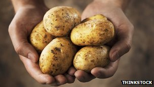 Hands holding some potatoes