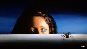 Woman afraid of a spider