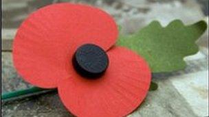 Poppy badge