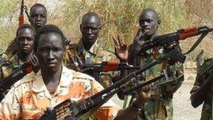 SSLA rebels