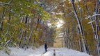 A woman walks on a snow covered road October 30, 2011 in Putney, Vermont.
