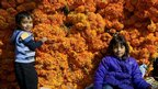 Children sit by bunches of flowers in a market in Mexico City