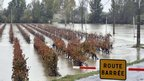 Flooded vineyards in area around the Herault town of Montagnac 5th Nov, and closed road