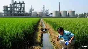 Chinese environmental activist Wu Lihong checks the water quality in an irrigation channel outside a chemical factory beside a rice paddy.