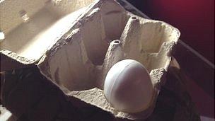 An eggbox
