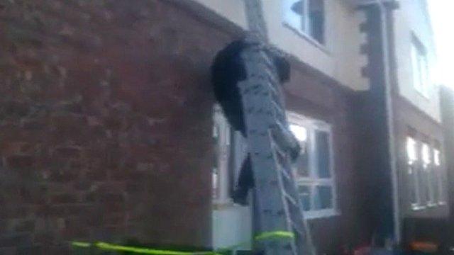 Falling ladder