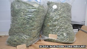 Bags of cannabis. Pic: SCDEA/Northern Constabulary