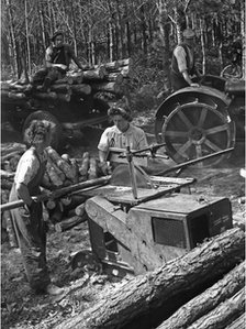Lumberjills at work during the Second World War. Photo: Forestry Commission