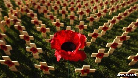 Volunteers planted 11,000 remembrance crosses in Edinburgh